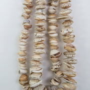 NATURAL SHELL BEADS
