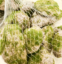 Bag Of Mossy Rocks