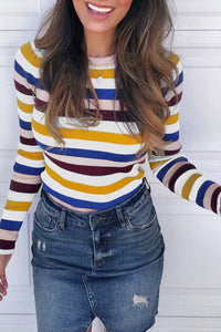 Inscici Striped Multicolor Skinny Long Sleeve Sweater