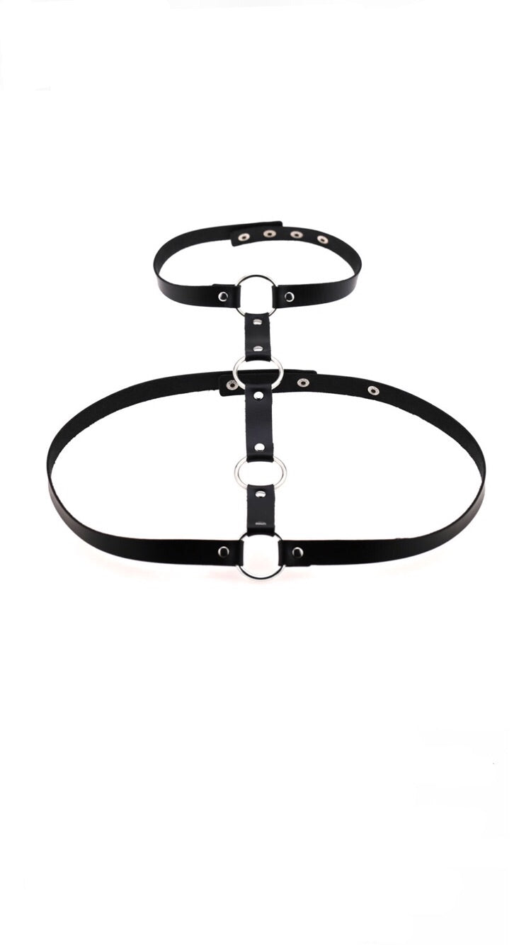BLACK 4 RING HARNESS