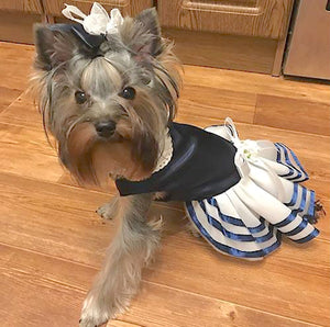 Blue Satin Dog Dress with Ribbon Trimmed Tulle Skirt - The Uppity Puppy