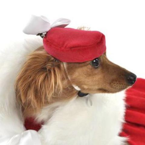 Sophisticated Red Velveteen Pill Box Dog Hat with White Bow
