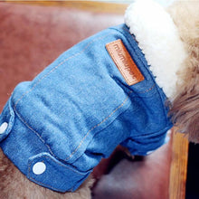 Luxury Blue Denim Dog Jacket with Fleece Lining