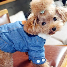 Luxury Blue Denim Dog Jacket with Fleece Lining - The Uppity Puppy