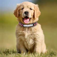 Personalized Braided Leather Collar for Small, Medium & Large Dogs - The Uppity Puppy