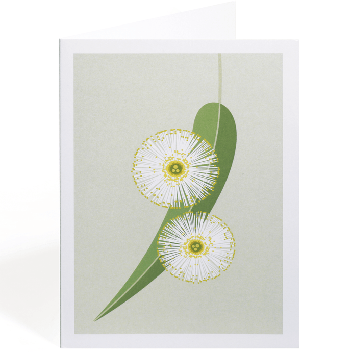 TASMANIAN BLUE GUM GREETING CARD