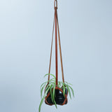 Tan Leather Plant Hanger