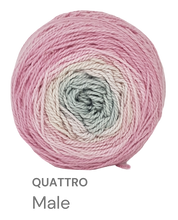 Load image into Gallery viewer, Moya Quattro - Double Knit Cotton Gradient Cakes