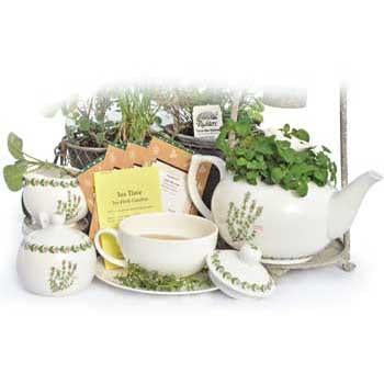 Richters Collection: Tea Time Herb Garden
