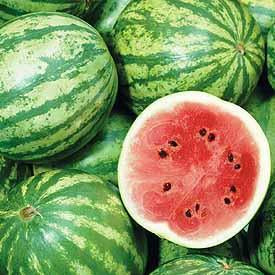 Watermelon - Crimson Sweet Watermelon Seed Pack (Citrullus lanatus 'Crimson Sweet')