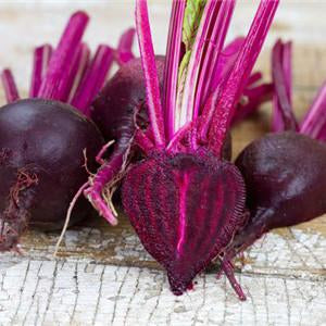 Beet - Bull's Blood Beet Seed Pack (Beta vulgaris 'Bulls Blood')