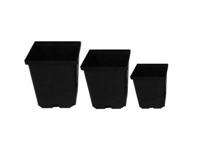 Kordlock Plastic Plant Pot - Square Hard 5.5x5.5x6""