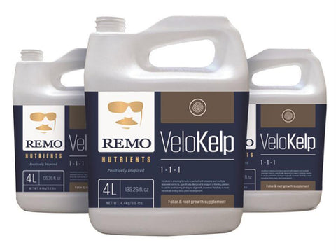 Remo Nutrients & Additives - Remo's VeloKelp  4L