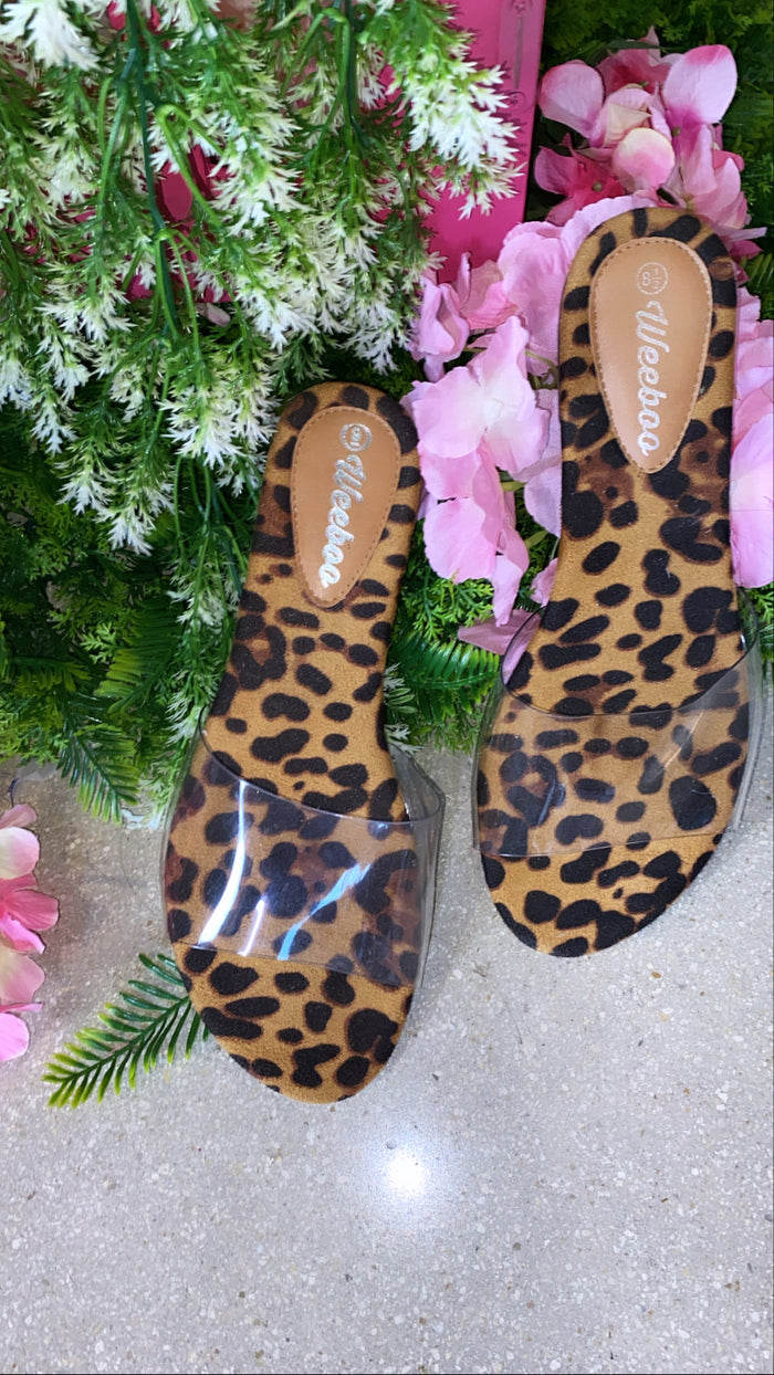 Leopard Clear Slides