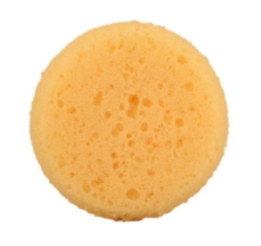 Royal - Semi Rounded Edges Face Painting Sponge (R2005) - Jest Paint Store