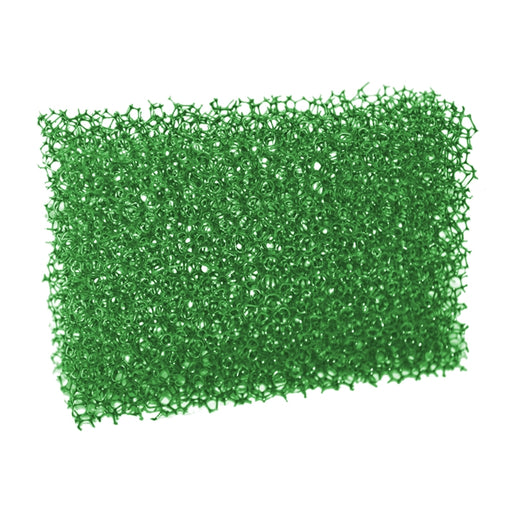 Silly Farm Green Large Stipple Face Painting Sponge - Jest Paint Store