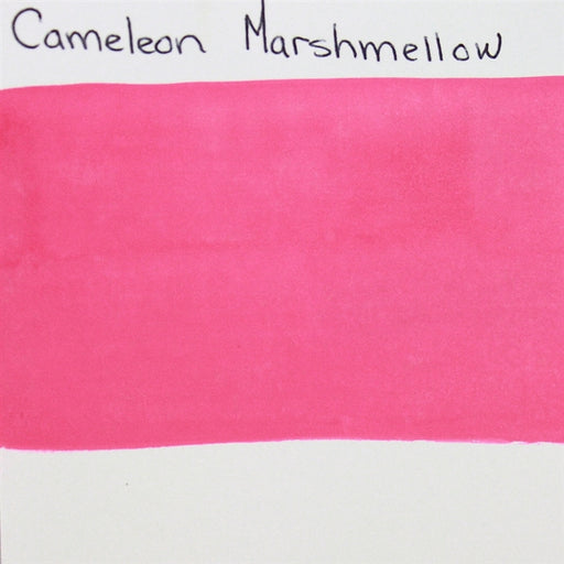 Cameleon - Baseline Pink (Marshmellow) 30gr (BL3017) SWATCH - Jest Paint Store