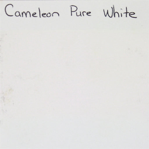 Cameleon - Baseline Pure White (Ivory) 30gr (BL3015) SWATCH - Jest Paint Store