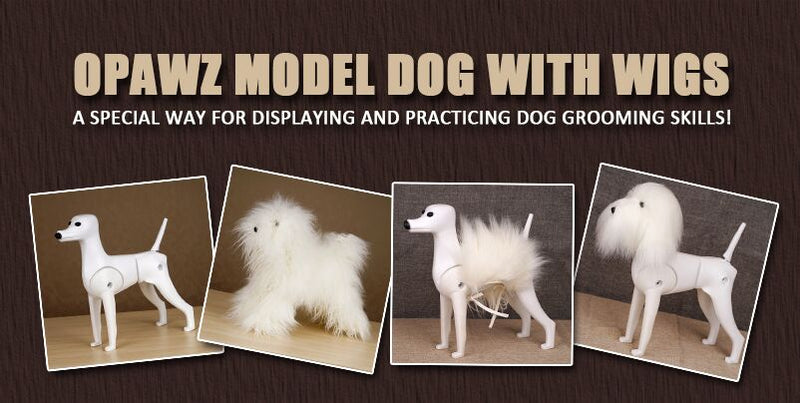 OPAWZ Model Dog with Wig - Best Way to Display and Practice!
