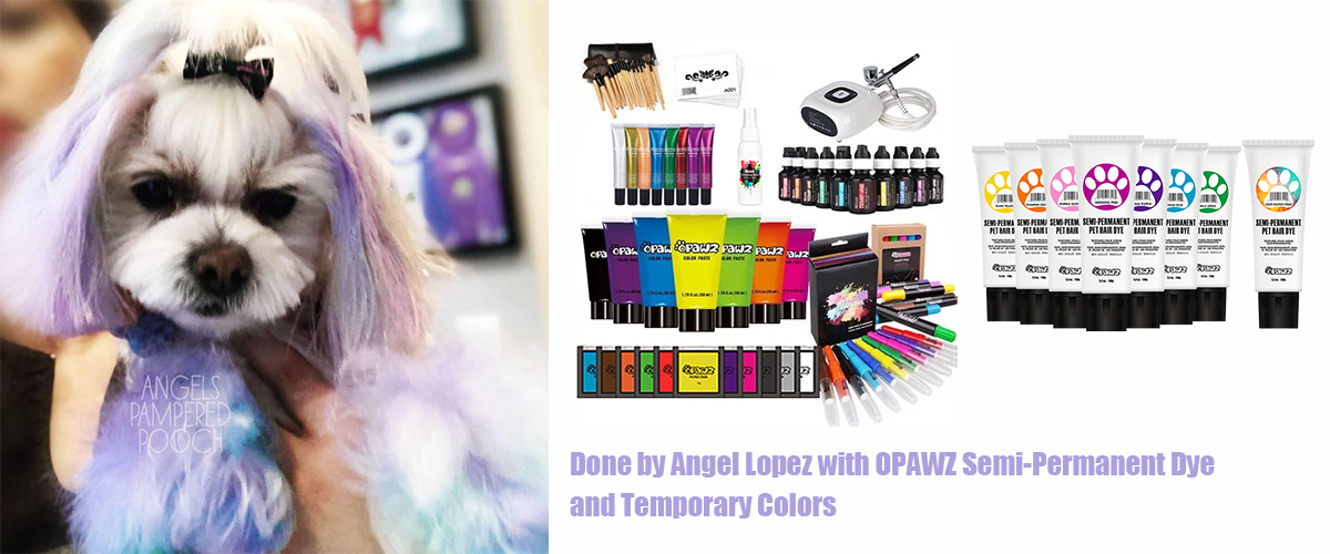Angel Lopez with OPAWZ Semi-Permanent Dye and Temporary Colors