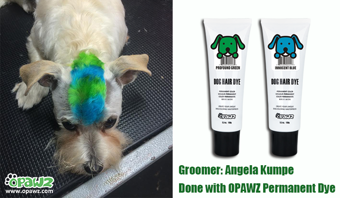 Angela Kumpe with OPAWZ Permanent Dye
