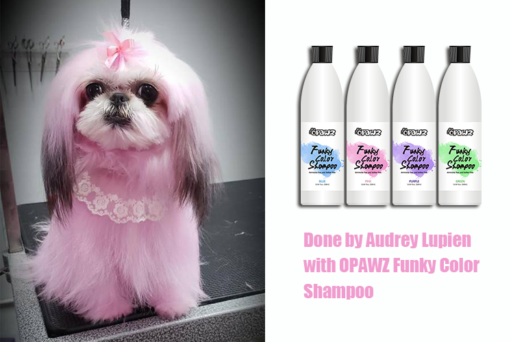 Audrey Lupien with OPAWZ Funky Color Shampoo