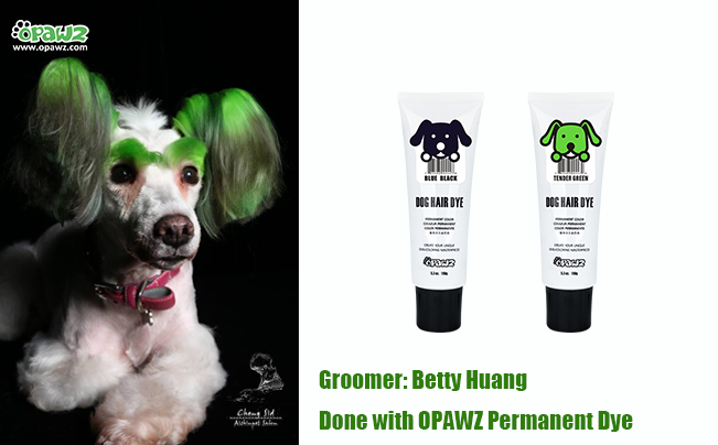 Betty Huang with OPAWZ Permanent Dye