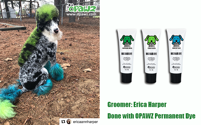 Erica Harper with OPAWZ Permanent Dye