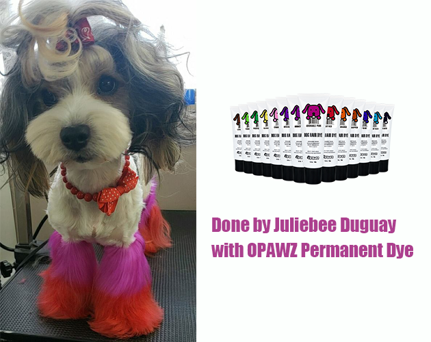 Juliebee Duguay with OPAWZ Permanent Dye