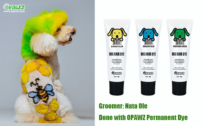 Nata Ole with OPAWZ Permanent Dye