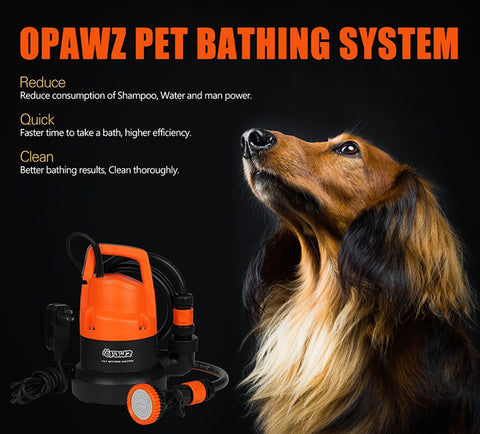 dog next to opawz pet bathing system