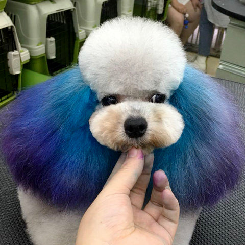 How to Create a Beautiful Color Blending Effect for Dog's Ears by Usin