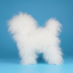 OPAWZ Teddybear Whole Body Dog Wig - White (DW08)