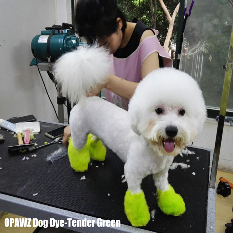 Dog Hair Dye-Tender Green (PD10)