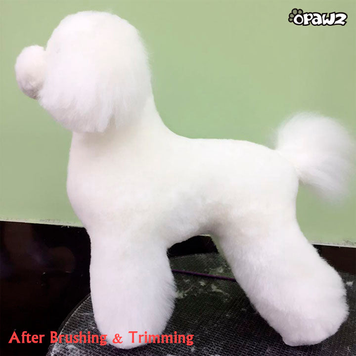 OPAWZ Toy Poodle Model Dog