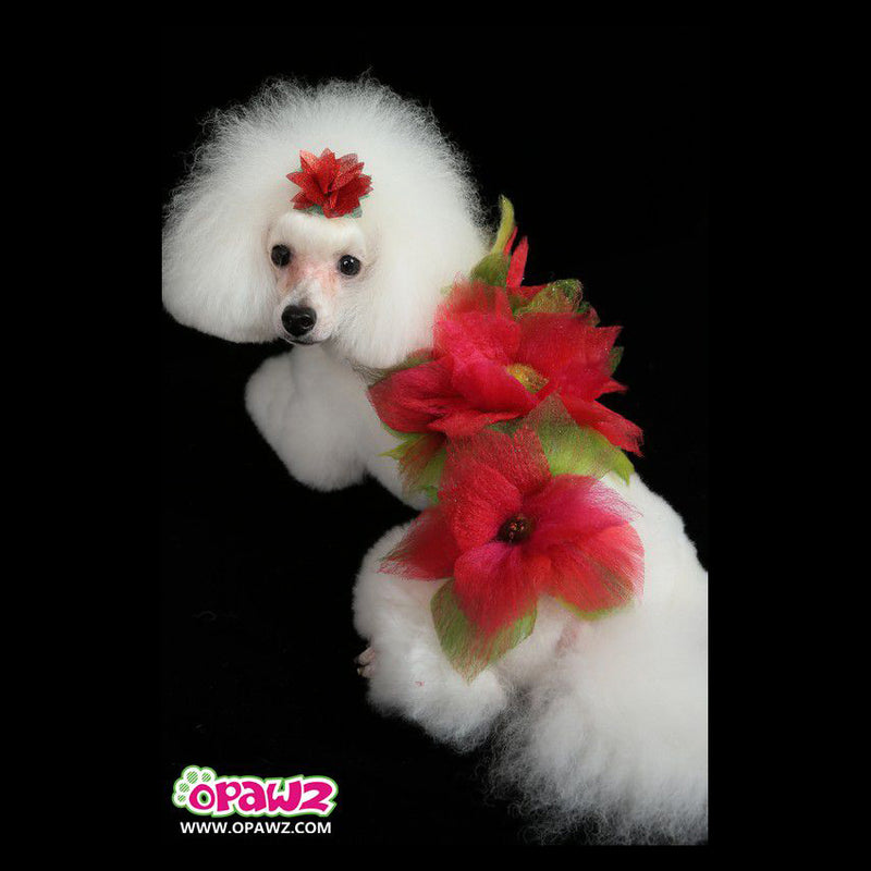 Dog Hair Dye-Hot Red - 150