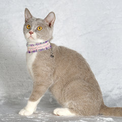 OPAWZ Pet Collar