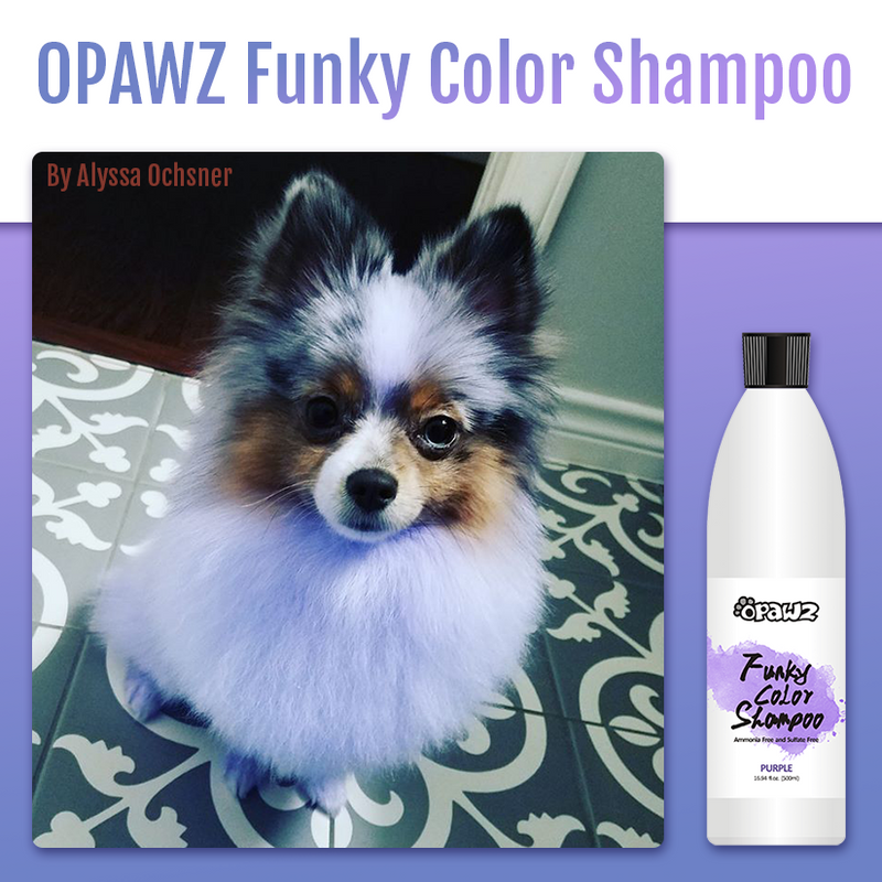 OPAWZ Funky Color Shampoo - Purple - 500ml (FC05)