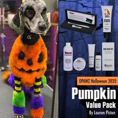 OPAWZ Halloween 2020 Value Pack - Pumpkin (VP53)