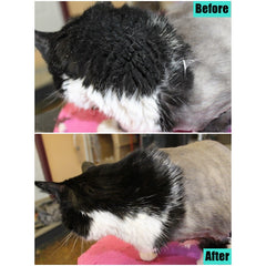 OPAWZ C2-Bouncy Shampoo for Short Haired Cat
