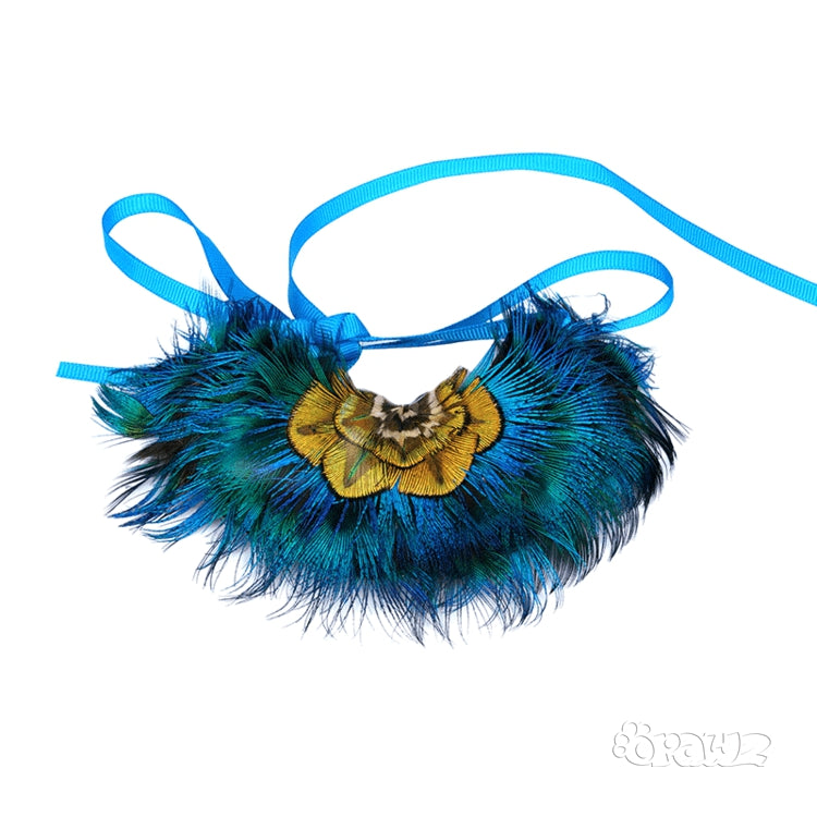 Peacock Feather Pet Collar - A045