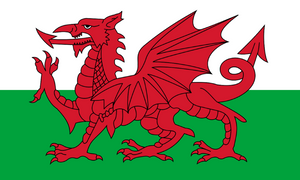 Welsh national flag 5 foot x 3 foot in size