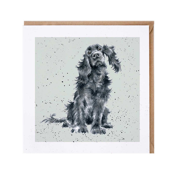 Black Cocker Spaniel Dog Card