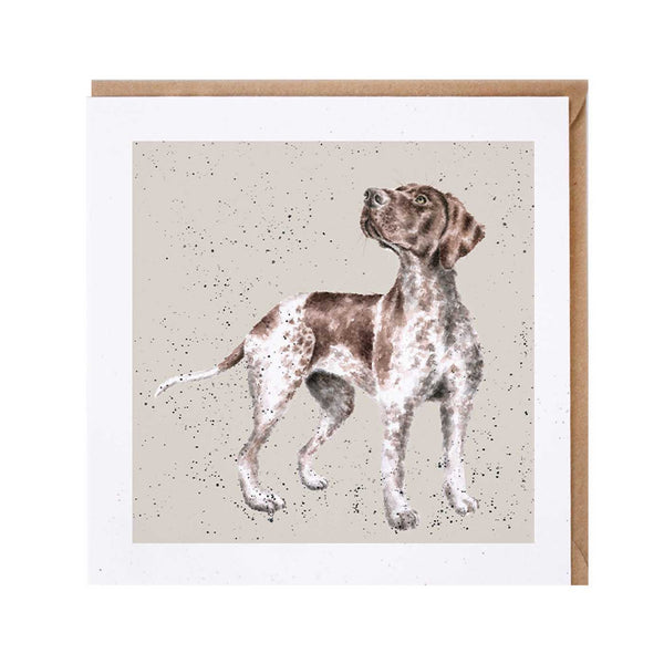 German Pointer Dog Card