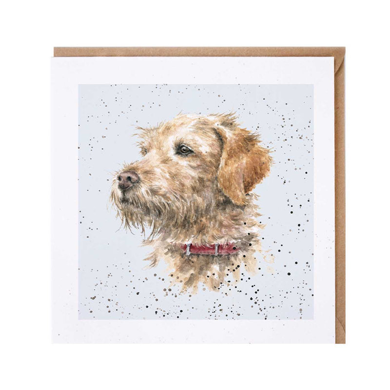 Labradoodle Dog Card