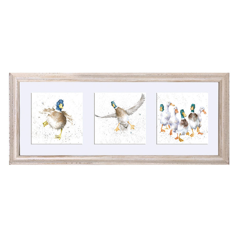 A Trio of Framed Ducks Prints