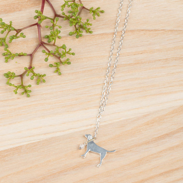 Labrador On A Lead Necklace Jewellery