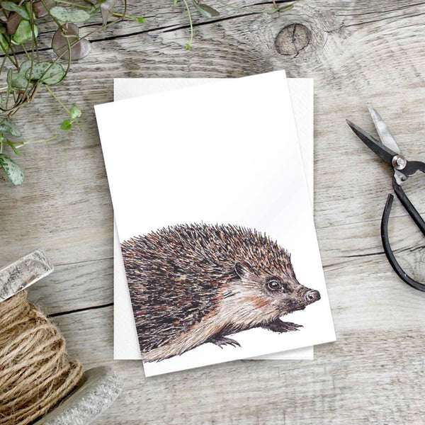 Hedgehog Notecards Set of 6