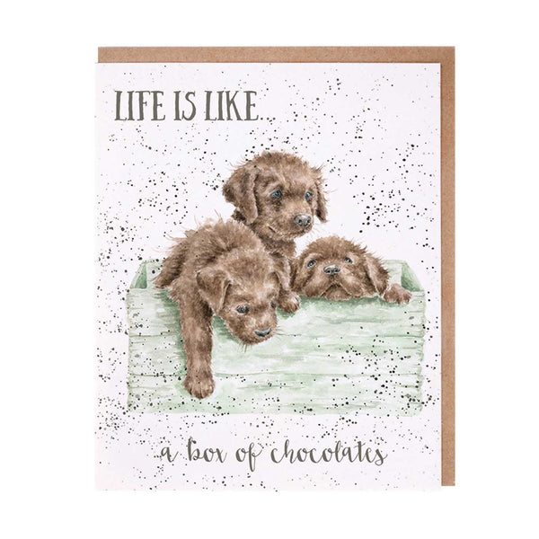 Life Is Like a Box of Chocolates Card