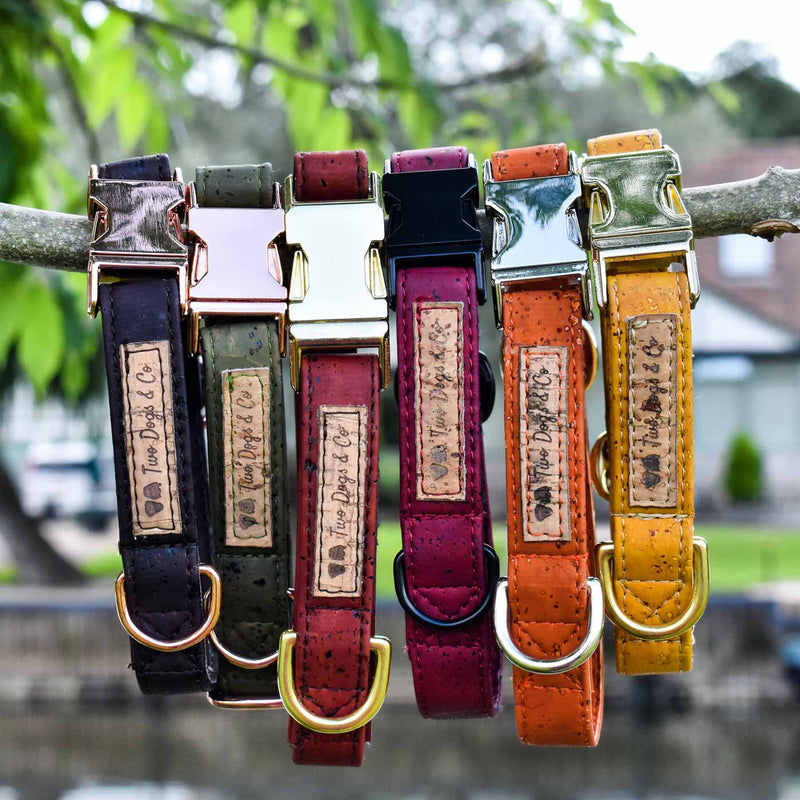 Cork Dog Collar Colours